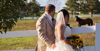 Bride and groom looking out into horse pasture together