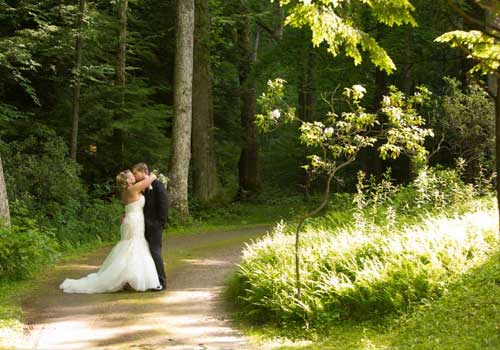 Couple embraces on dirt road in forest