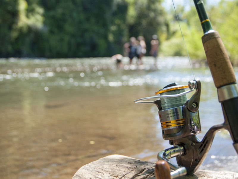 Laurel Highlands Fishing